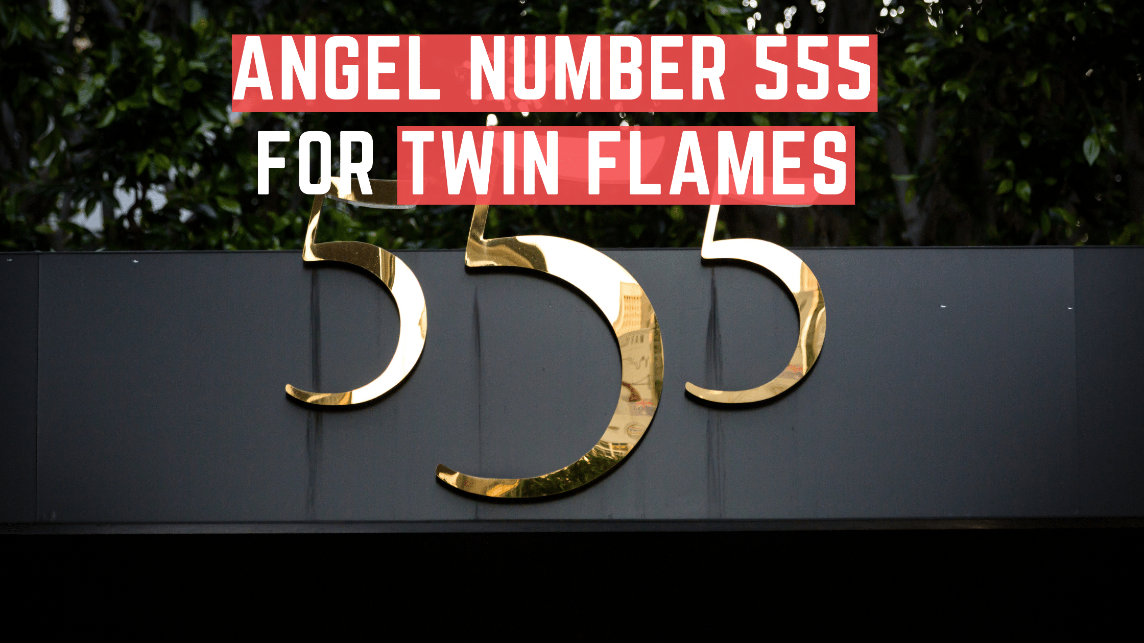 What Does Seeing 555 Mean for Twin Flames?