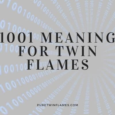 1001 meaning for twin flames