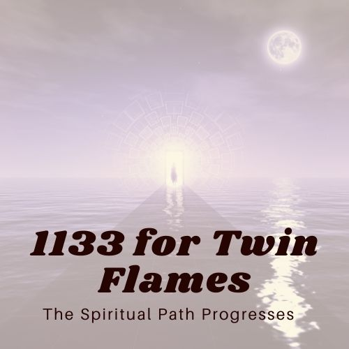 1133 for Twin Flames