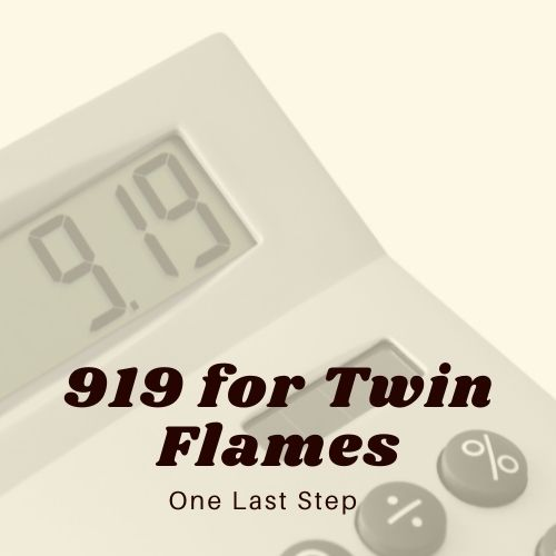 919 for Twin Flames