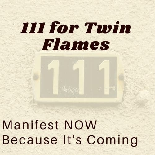 111 meaning for twin flames